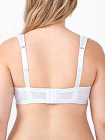 Ti Voglio Padded T-Shirt Bra with Mesh