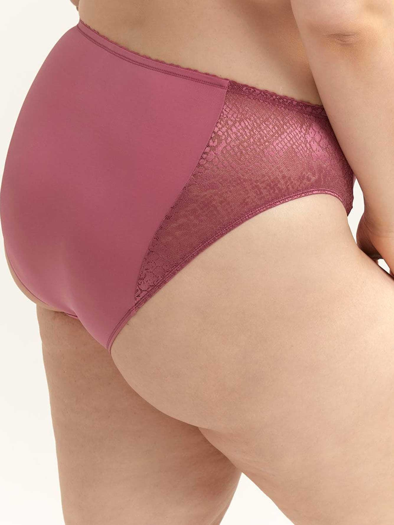Snakeskin High Cut Brief Panty - ti Voglio