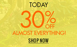 UToday 30% off almost everything. Shop now